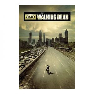 LAMINATED-The-Walking-Dead-Season-1-Television-Poster-24x36-0