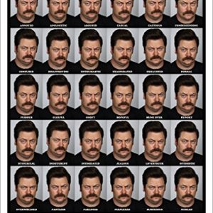 Parks-and-Recreation-Many-Faces-of-Ron-Swanson-Workplace-Comedy-TV-Television-Show-Poster-Print-Unframed-11x14-0