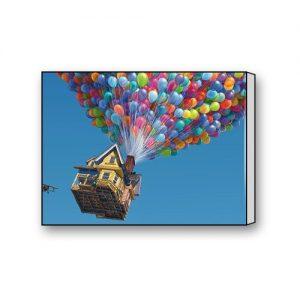 UP-Pixar-Animation-Studios-Canvas-Print-16-x-12-0