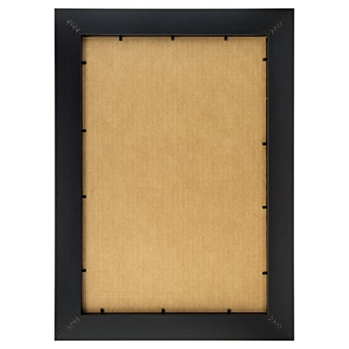Craig Frames 200ashbk2436aac Picture Poster Frame In Wood