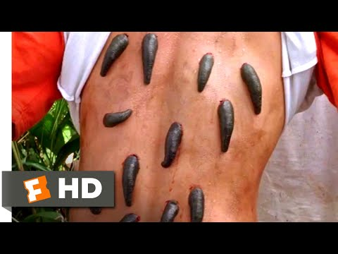 Anacondas 2 (2004) – Bloodsucking Leeches Scene (2/10) | Movieclips