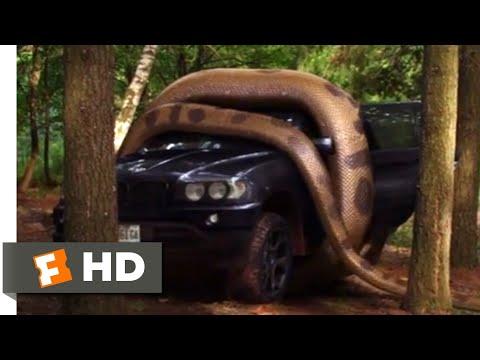 Lake Placid vs. Anaconda (2015) – Anaconda vs. SUV Scene (5/10) | Movieclips