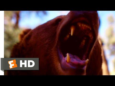 Body at Brighton Rock (2019) – Bear Attack Scene (8/8) | Movieclips